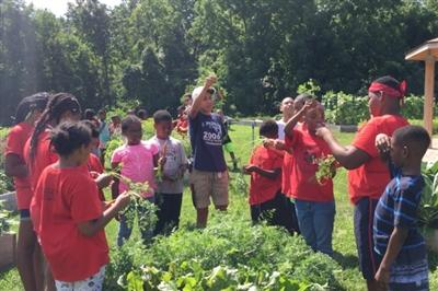 A group of students at the farm learning