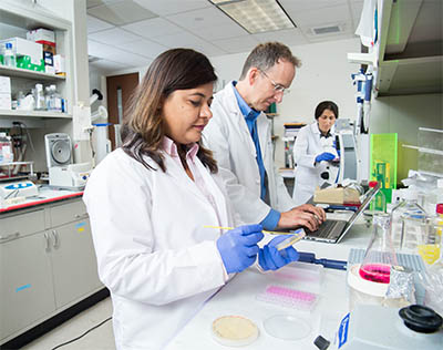 Center for Human Antibody Technology lab work
