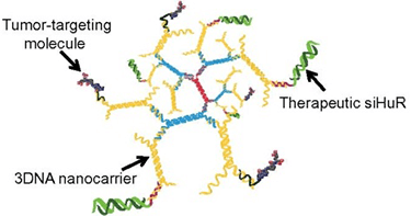 Targeted Nano-Carrier Therapeutics