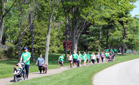 runners, walkers and rollers at the Race to Recovery