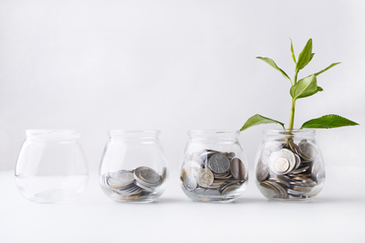 Plant growing on coins in glass jar