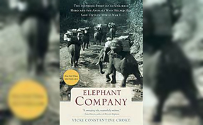 Elephant Company book cover