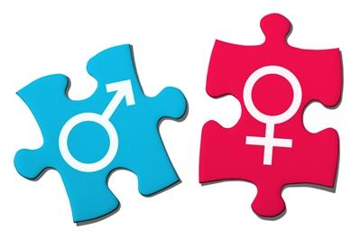 Male and female gender symbols on blue and red puzzle pieces respectively