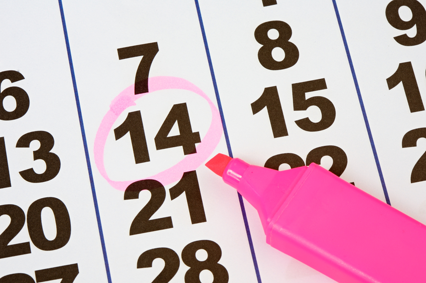 calendar with a date circled in pink highighter
