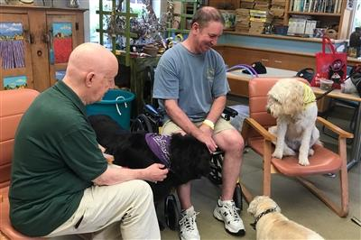 A pet therapy session in the Horticultural Center at Bryn Mawr Rehab Hospital (three dogs with a patient and volunteer)