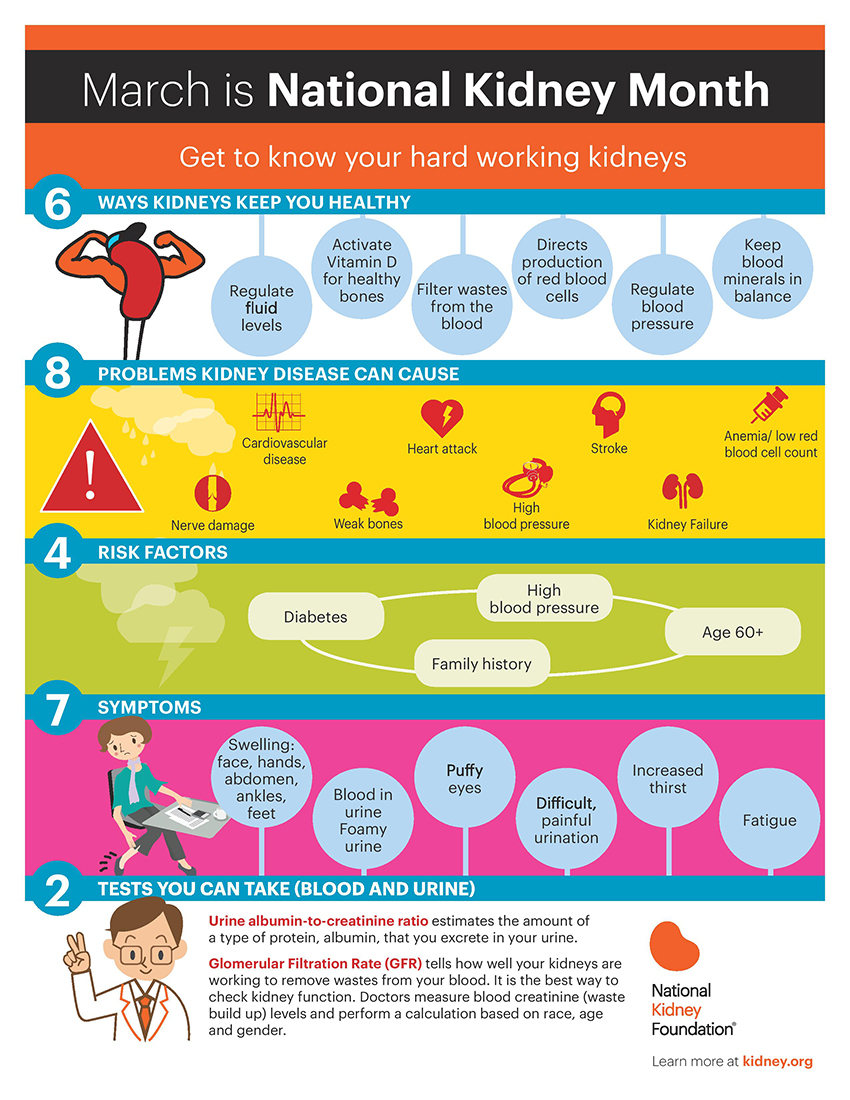March is National Kidney Month inforgraphic