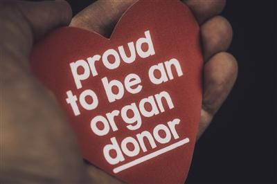 Hand holding red heart shape that says proud to be an organ donor