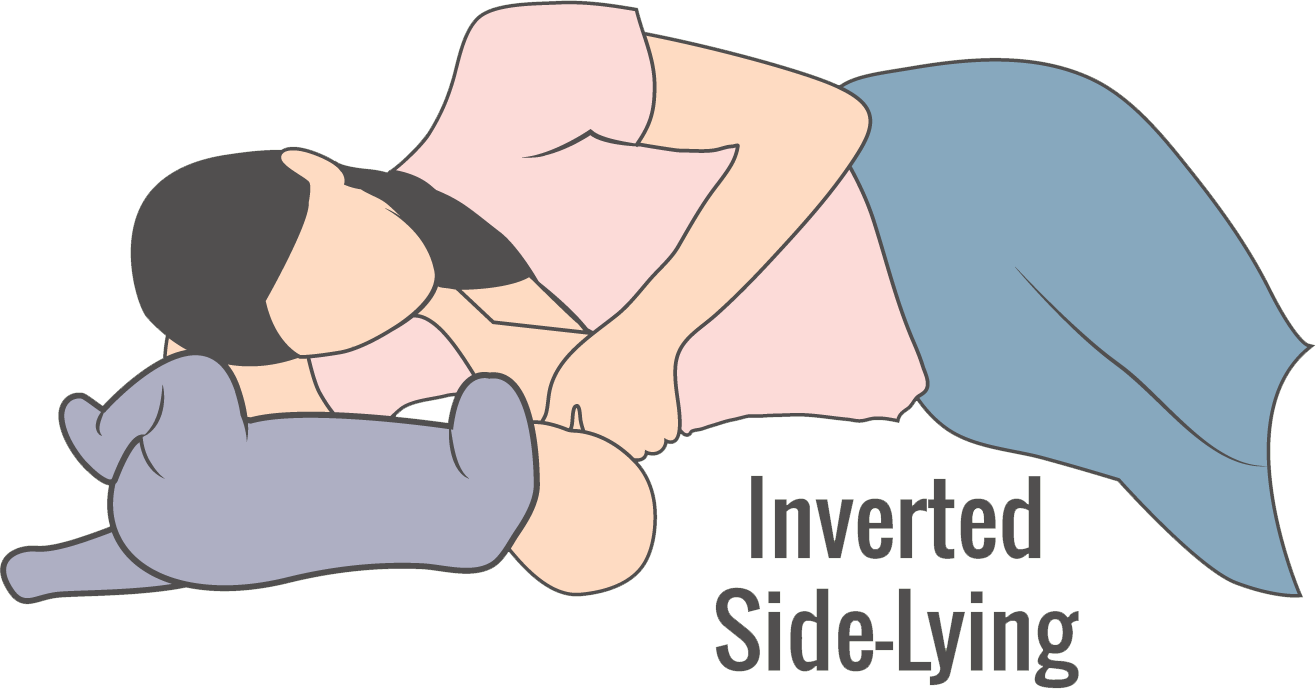 illustration of inverted side-lying breastfeeding hold