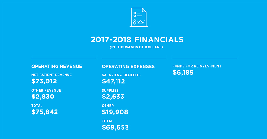2017-2018 financials infographic